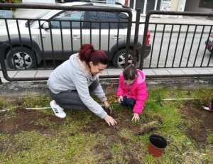 Τα παιδιά μαζί με τους γονείς τους φυτεύουν τις φωτίνιες